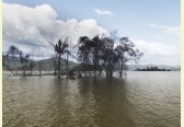 International NGO coalition condemns Malaysian dam plans